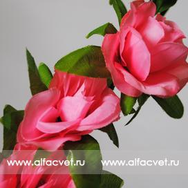 ветки роз цвета светло-розовый 9