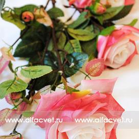 ветка роз цвета розовый с белым 14
