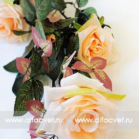 ветка роз цвета чайный 3