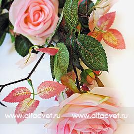 ветка роз цвета светло-розовый 9