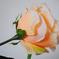 искусственные цветы роза цвета кремовый 24