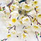 букет сакуры цвета белый 6