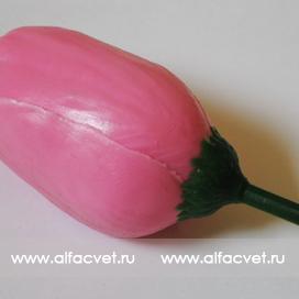 тюльпан цвета розовый 5