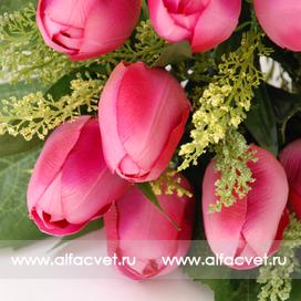 тюльпаны цвета розовый 5