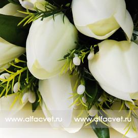 тюльпаны цвета белый 6