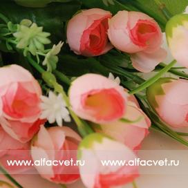 тюльпаны цвета светло-розовый 9