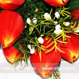 тюльпаны цвета красный 4