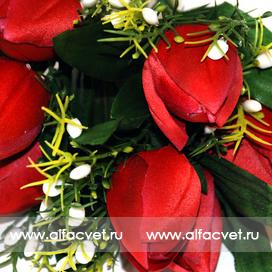 тюльпаны цвета бордовый 61