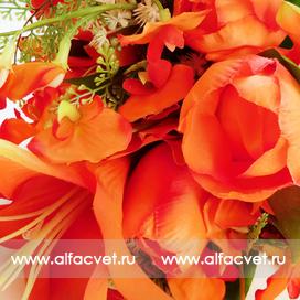 тюльпаны-лилии цвета оранжевый 2