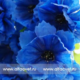 васильки цвета синий 12