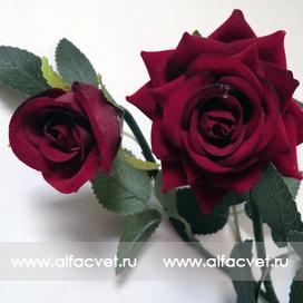 ветка роз цвета бордовый 61