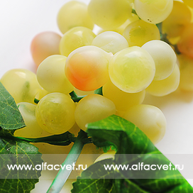 виноград средний цвета желтый 1