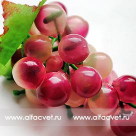 виноград маленький цвета красный 4