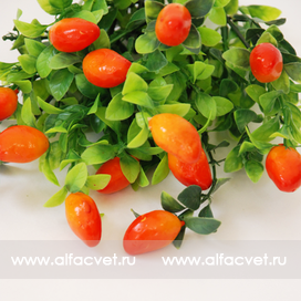 ягоды цвета оранжевый 2